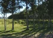 Vendo campo 5 hectareas en proximidades a la ciudad de aigua!