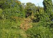 Vendo terreno exelente ubicacion