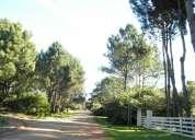 Vendo campo 174has con vista al pueblo eden. campo turistico y ganadero