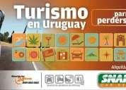 Traslado de grupos. oportunidad de negocio emprendedor para guías de turismo independientes.