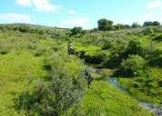 Terreno 30,2 hectares pueblo eden, maldonado, uruguay, 16000 us$/hec. : 483000 us$